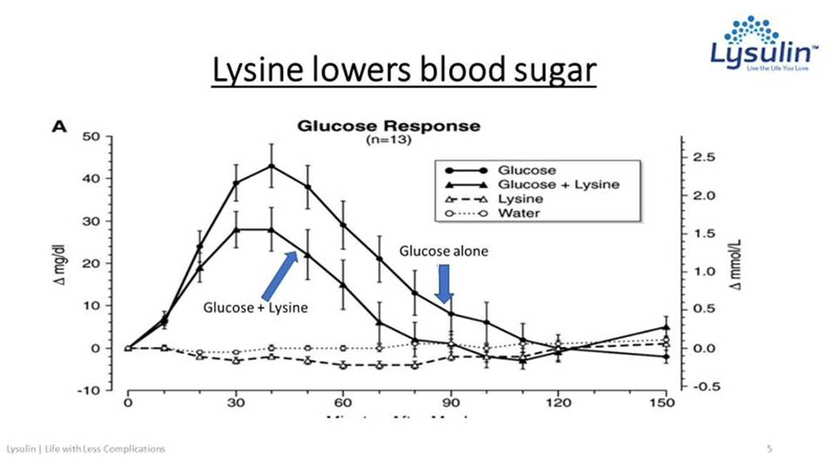 Lysulin lowers blood sugar